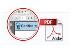 Secure PDF Document